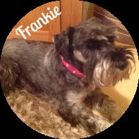 image_frankie_circle