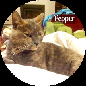 image_pepper_circle